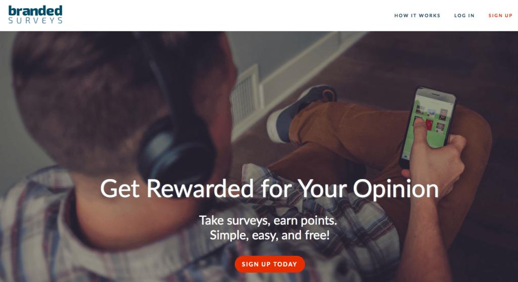 What Is MintVine Surveys?
